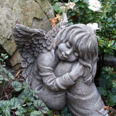 Anioł Eva